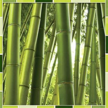 """Защитное стекло """"Бамбук"""" 600*600*4 мм"""