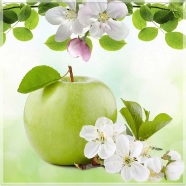 """Защитное стекло """"Весенние яблоки"""" 600*600*4 мм"""