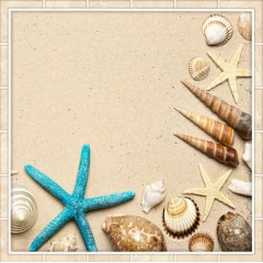 """Защитное стекло """"Ракушки на песке"""" 600*600*4 мм"""