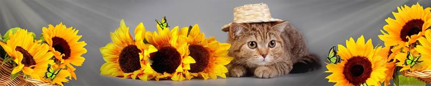 Кухонный фартук АБС Подсолнухи и кот