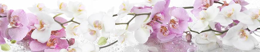 Кухонный фартук АБС Ветка орхидеи
