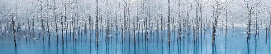 Кухонный фартук АБС Морозный лес
