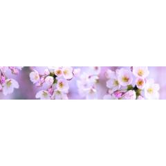 """Кухонный фартук АБС """"Розовые соцветия"""""""