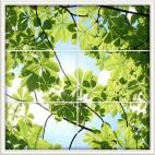 """Защитное стекло """"Листья каштана (окно)"""" 600*600*4 мм"""