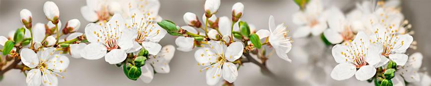 Кухонный фартук АБС Белые цветы