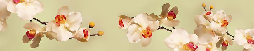 Кухонный фартук АБС Нежные орхидеи
