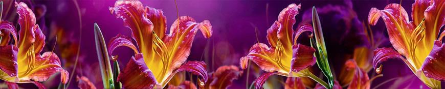 Кухонный фартук АБС Огненная лилия