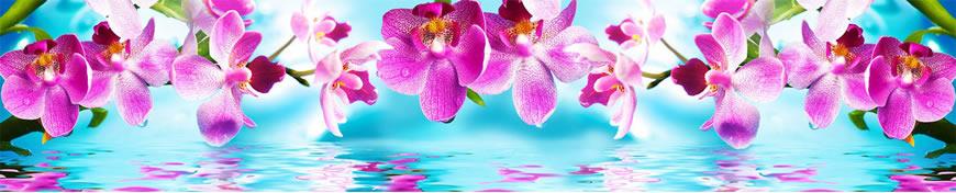 Кухонный фартук АБС Орхидеи на голубом