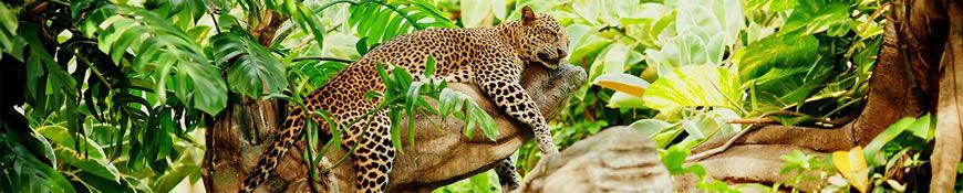 Кухонный фартук АБС Сон в джунглях