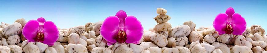 Кухонный фартук АБС Водные орхидеи
