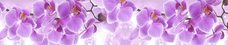 Кухонный фартук АБС Волшебная орхидея