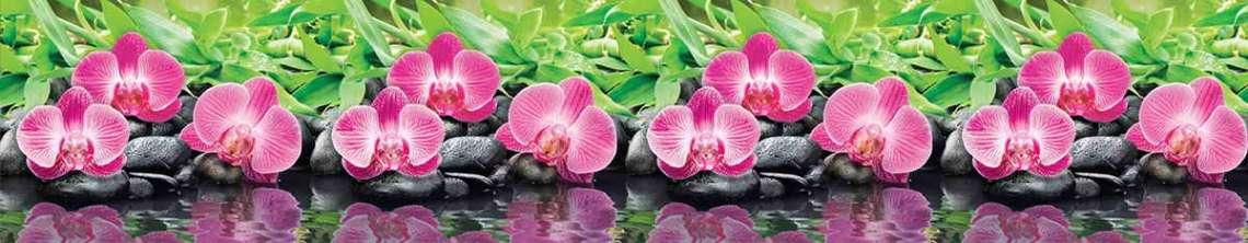 Кухонный фартук АБС Орхидеи Эпифиты