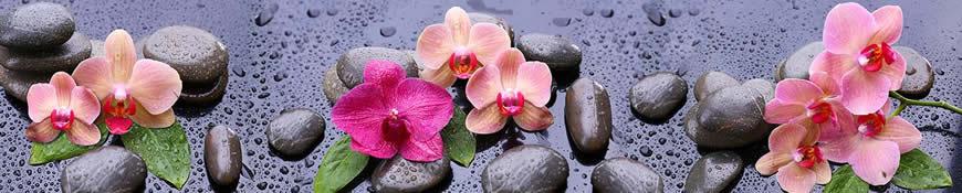 Кухонный фартук АБС Орхидеи после дождя