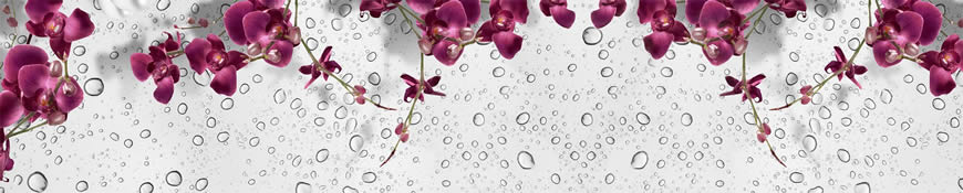 Кухонный фартук АБС Орхидеи бордо