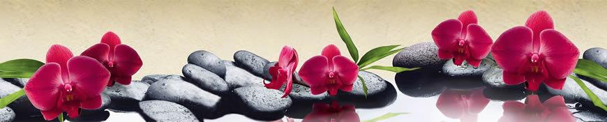 Кухонный фартук АБС Красные орхидеи
