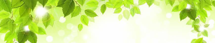 Кухонный фартук АБС Зеленая листва