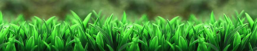 Кухонный фартук АБС Сочная трава