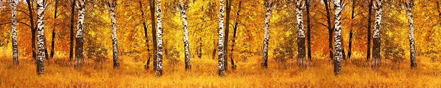 Кухонный фартук АБС Осенний день