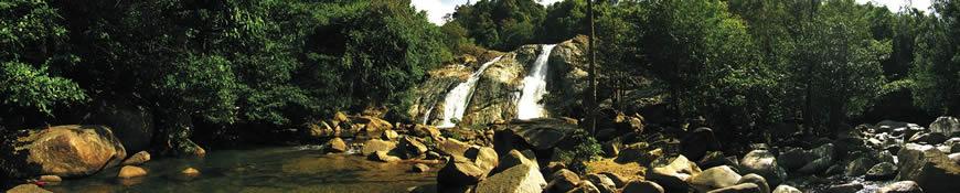Кухонный фартук АБС Лесной водопад