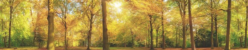 Кухонный фартук АБС Золотая осень